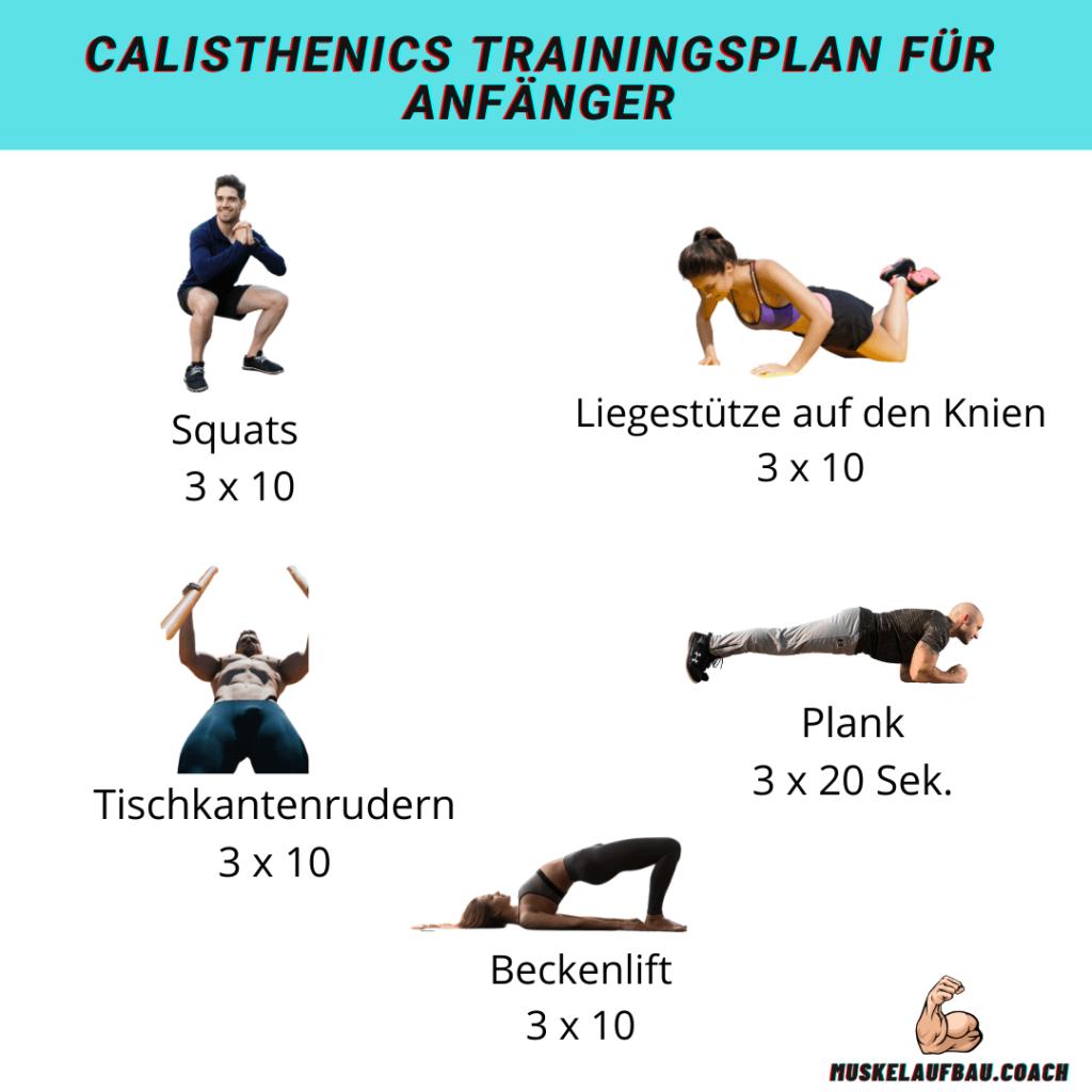 Calisthenics Trainingsplan für Anfänger