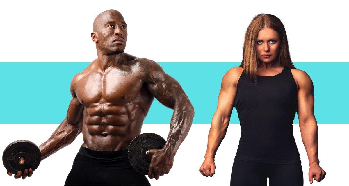 Trainingspläne für Muskelaufbau
