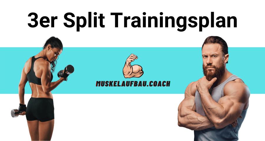 3er Split Trainingsplan für Muskelaufbau