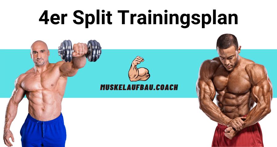 4er Split Trainingsplan für Muskelaufbau