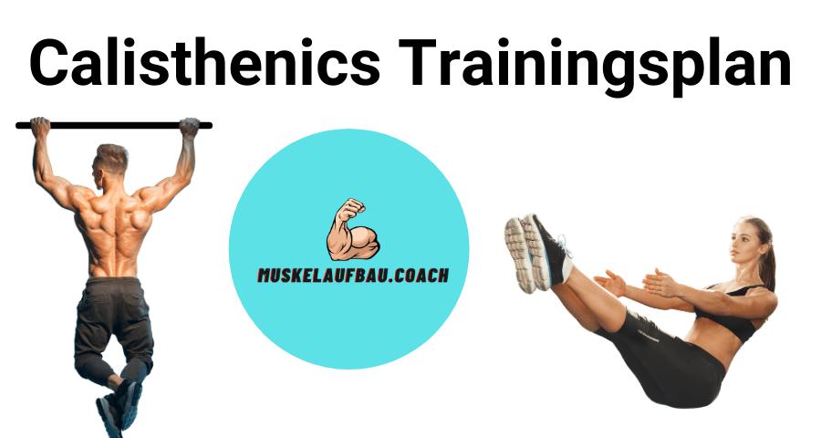 Calisthenics Trainingsplan für Anfänger und Fortgeschrittene