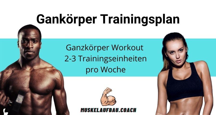 Ganzkörper Workout