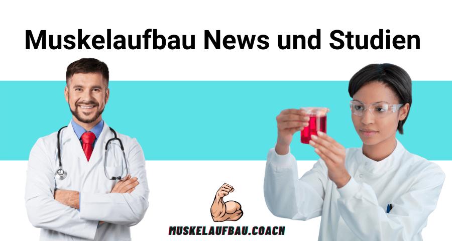 Muskelaufbau News und Studien