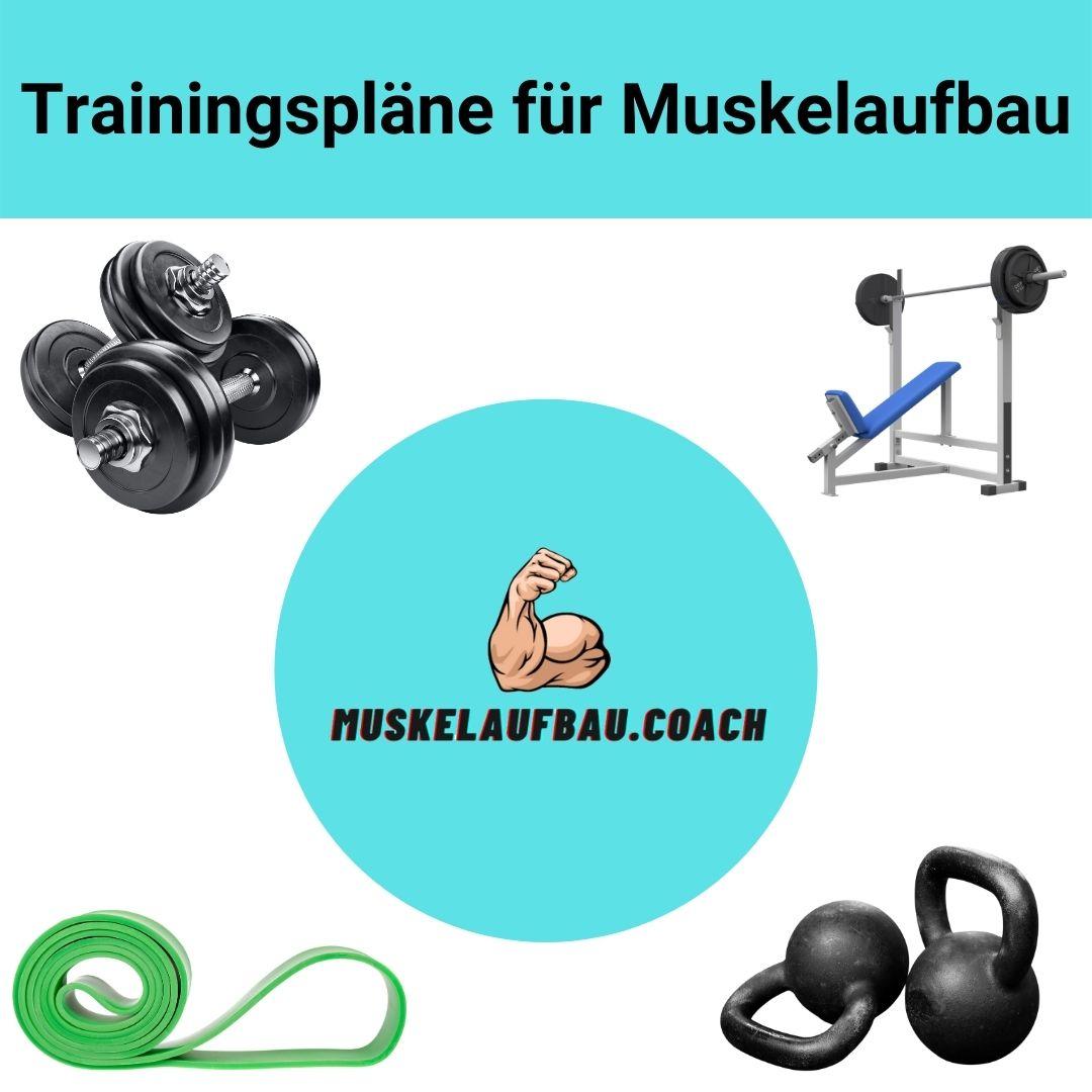 Trainingsplan für Muskelaufbau für Fitnessstudio, zu Hause und Calisthenics.