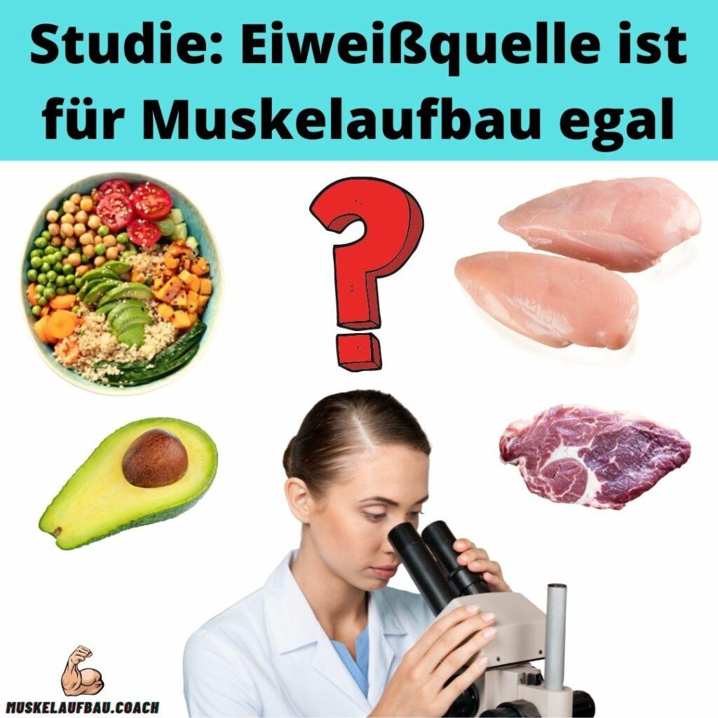 Vegan Muskelaufbau